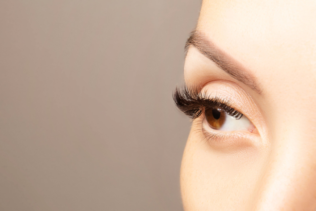Brown eye with beautiful long lashes closeup with copy space. Brown color eye lash extension, 3D or 4D volume. Eyelash care, lamination, extensions, coloring, curling